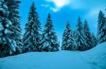 Winterwandeung