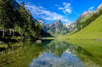 Juni    –  Der bekannte Seealpsee liegt im Alpsteingebiet auf einer Höhe von 1141 Metern über Meer oberhalb des Dorfes Wasserauen
