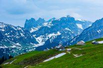 Machen Sie einen Ausflug und kommen Sie in den Genuss einer wunderbaren Aussicht und der weit herum bekannten Alpenflora.