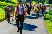 Appenzeller   Alpabfahrt – Appenzell alpine descent