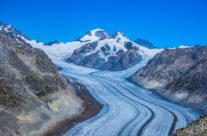 """Das Aletschgebiet gehört zum UNESCO-Welterbe. Und das nicht nur, weil der """"Grosse Aletschgletscher"""" mit seinen unglaublichen 11 Milliarden Tonnen Eis der grösste Alpengletscher ist. Die ganze Region ist Lebensraum für viele seltene Tier- und Pflanzenarten, beispielsweise im Aletschwald, in dessen Nähe auch das Naturschutzzentrum von Pro Natura liegt."""