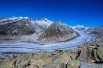 Das Gebiet des Grossen Aletschgletschers ist zusammen mit dem einzigartigen Aletschwald und den umliegenden Regionen seit dem 13. Dezember 2001 Bestandteil des UNESCO-Weltnaturerbes Schweizer Alpen Jungfrau-Aletsch.